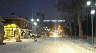 Edirne'de Kar (2017)